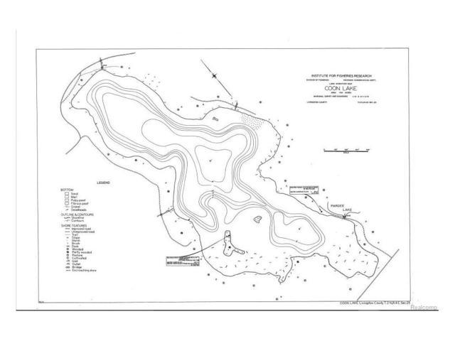 4501 Roya Trail, Marion Twp, MI 48843 (MLS #217069511) :: The Toth Team
