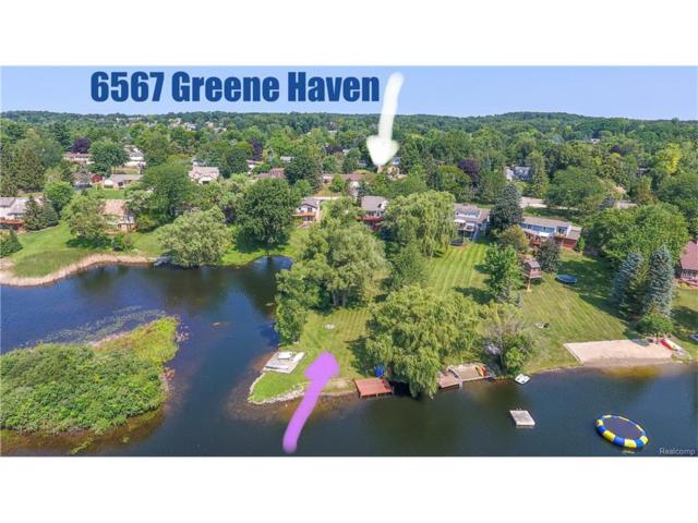 6567 Greene Haven, Independence Twp, MI 48348 (#217069895) :: Simon Thomas Homes