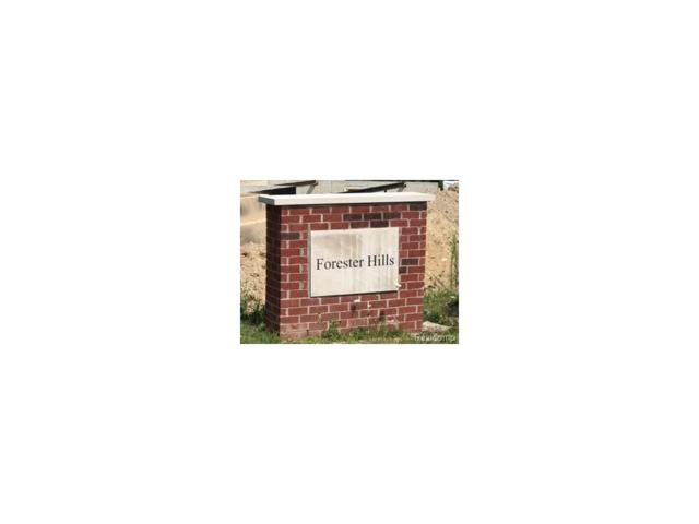 3926 Maple Lane, Auburn Hills, MI 48326 (MLS #217069951) :: The Toth Team