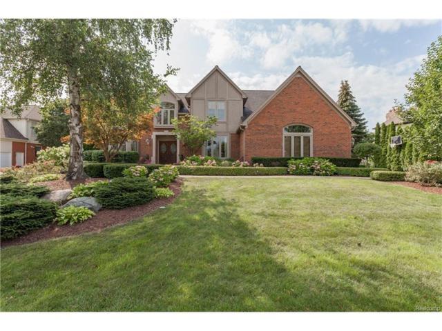 1110 Ridgeway Drive, Rochester, MI 48307 (#217070128) :: Simon Thomas Homes
