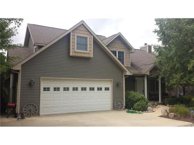 700 Wild Goose Lake Road, Lyndon Twp, MI 48137 (#217072345) :: The Buckley Jolley Real Estate Team