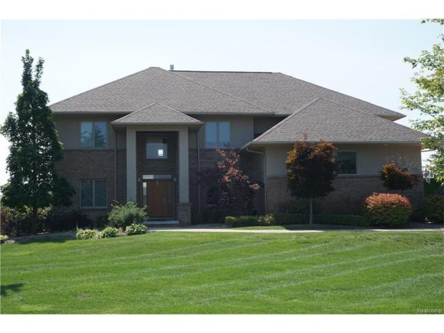 4176 Oak Tree Circle, Oakland Twp, MI 48306 (#217072439) :: Simon Thomas Homes