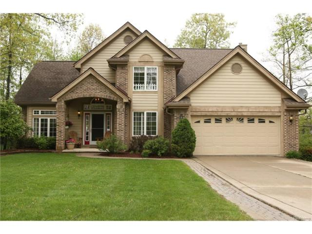 16177 Pine Lake Forest Drive, Fenton Twp, MI 48451 (#217072522) :: The Buckley Jolley Real Estate Team