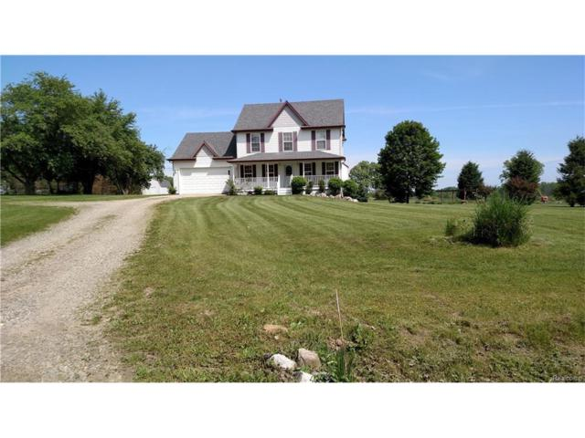 7796 Lange Road, Iosco Twp, MI 48836 (#217073010) :: The Buckley Jolley Real Estate Team