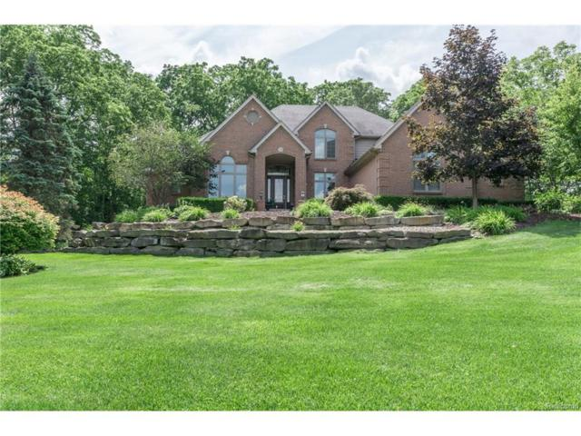 2701 Stone Meadow Drive, Milford Twp, MI 48380 (#217073435) :: The Buckley Jolley Real Estate Team