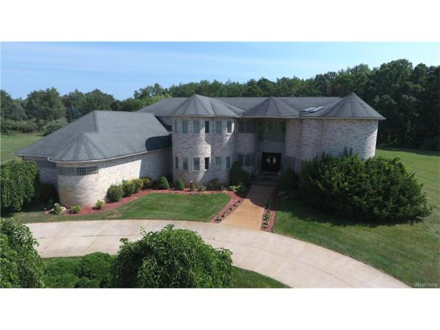 1126 Hunter Court, Milford Twp, MI 48381 (#217073458) :: The Buckley Jolley Real Estate Team