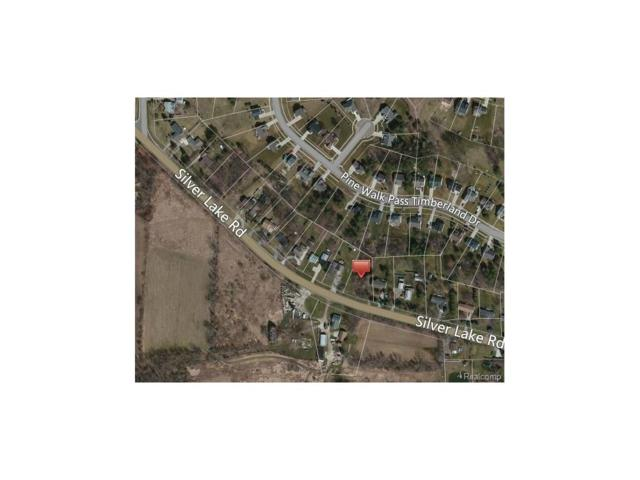 9178 Silver Lake Road, Argentine Twp, MI 48451 (#217073926) :: The Buckley Jolley Real Estate Team