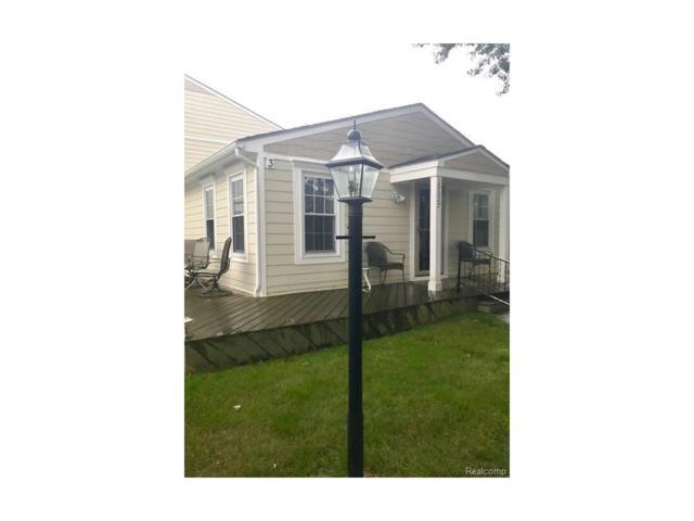 39527 Village Wood #12, Novi, MI 48375 (#217074001) :: Metro Detroit Realty Team | eXp Realty LLC