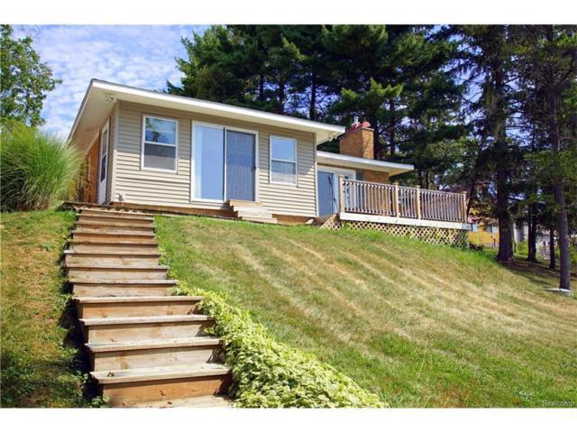 11380 Norway Drive, Hartland Twp, MI 48353 (#217074023) :: The Buckley Jolley Real Estate Team