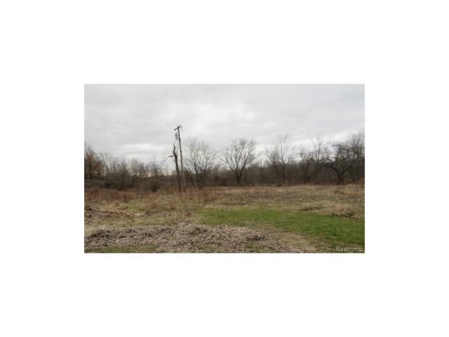 12500 Read Road, Hartland Twp, MI 48430 (#217074425) :: The Buckley Jolley Real Estate Team