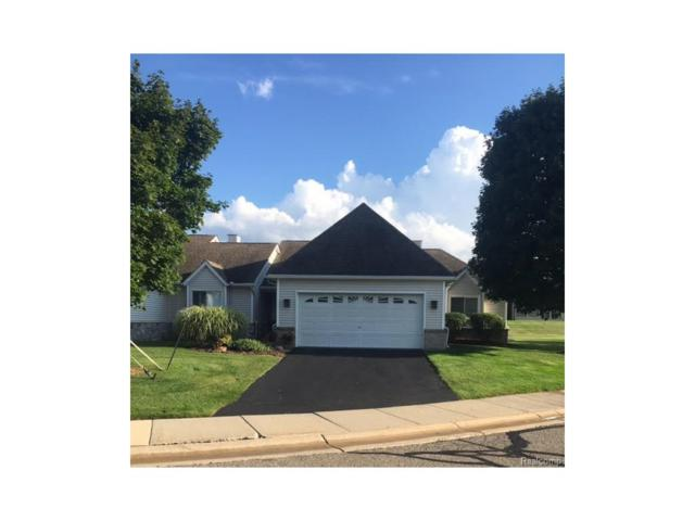 61019 Evergreen Court, South Lyon, MI 48178 (#217074645) :: The Buckley Jolley Real Estate Team