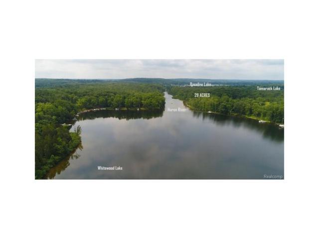 00000 Cedar Bend Drive, Hamburg Twp, MI 48169 (#217074739) :: The Buckley Jolley Real Estate Team