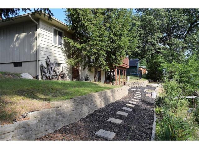 6072 Brockway Street, Commerce Twp, MI 48382 (#217075030) :: Simon Thomas Homes