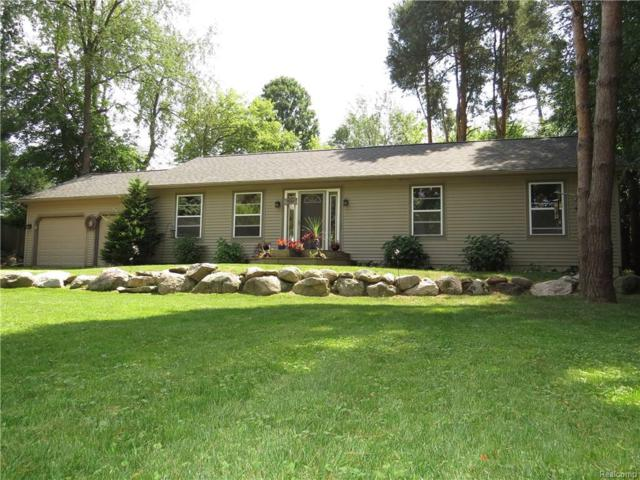 8339 Rustic Trail, Argentine Twp, MI 48451 (#217075120) :: The Buckley Jolley Real Estate Team