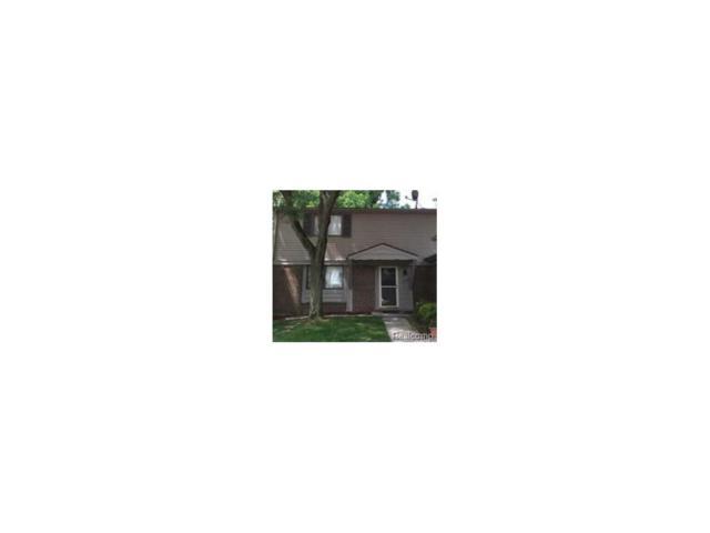 27033 Farmbrook Villa Drive, Southfield, MI 48034 (#217075429) :: Simon Thomas Homes