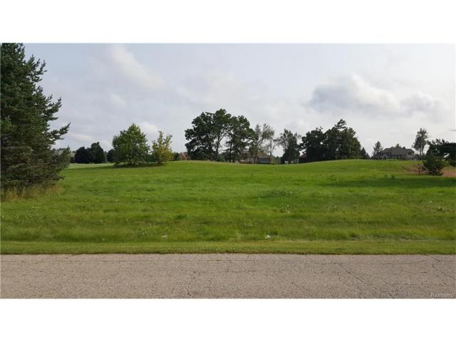 Lot 16 Masters Drive, Metamora Twp, MI 48455 (#217078686) :: The Buckley Jolley Real Estate Team