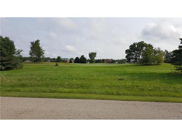 Lot 17 Masters Drive, Metamora Twp, MI 48455 (#217078693) :: The Buckley Jolley Real Estate Team
