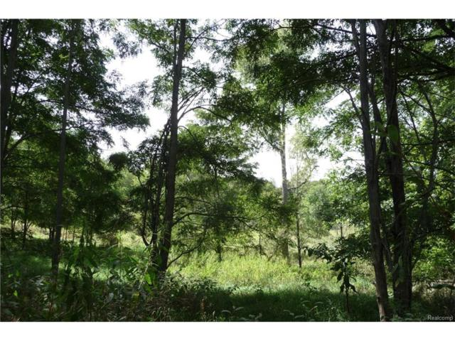 0000 Indian Camp Trail, Howell Twp, MI 48855 (#217079129) :: RE/MAX Nexus