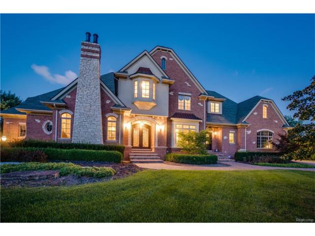 18918 Bella Vista Court, Northville Twp, MI 48168 (#217079278) :: The Buckley Jolley Real Estate Team