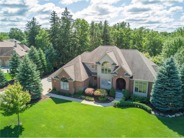 1291 Deer Path Trail, Oxford Twp, MI 48371 (#217081795) :: The Buckley Jolley Real Estate Team