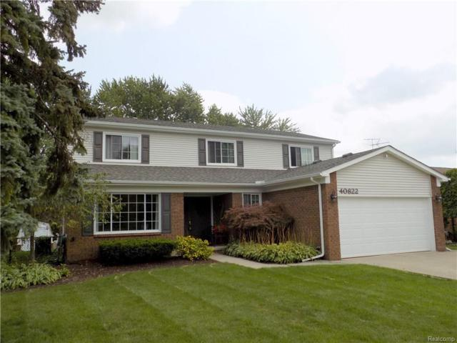 40822 Freedom Drive, Sterling Heights, MI 48313 (#217083845) :: RE/MAX Vision