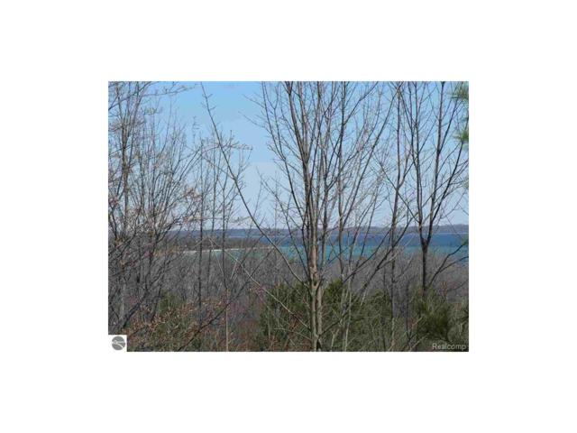 Lot 24 S Bay Valley Drive, Bingham Twp, MI 49682 (MLS #217088054) :: The Toth Team