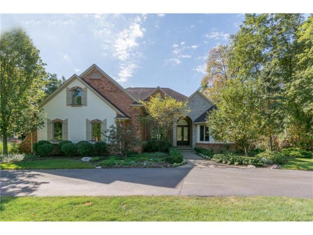 1260 Lacrosse Trail, Oxford Twp, MI 48371 (#217089396) :: The Buckley Jolley Real Estate Team