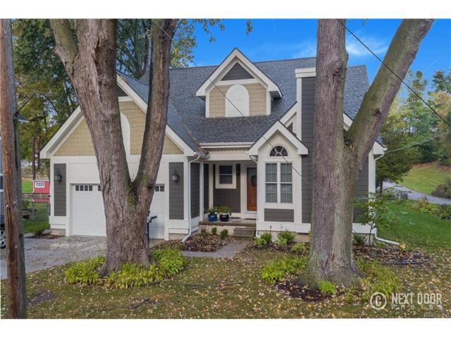 10095 John R Street, Green Oak Twp, MI 48189 (#217089696) :: The Buckley Jolley Real Estate Team