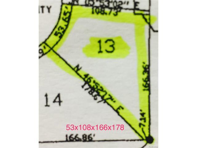 3126 Spruce Drive, Port Huron, MI 48060 (MLS #217089963) :: The Toth Team