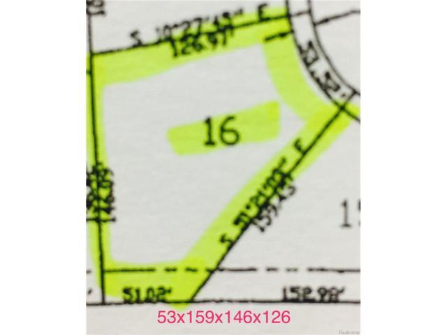 3123 Spruce Drive, Port Huron, MI 48060 (MLS #217089969) :: The Toth Team