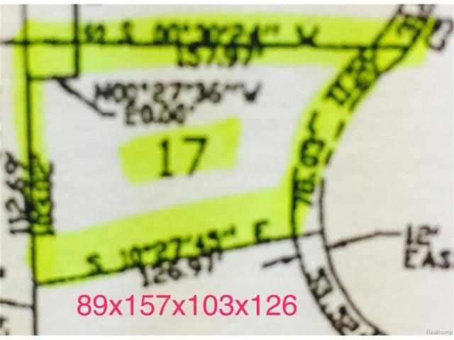 3133 Spruce Drive, Port Huron, MI 48060 (MLS #217089987) :: The Toth Team