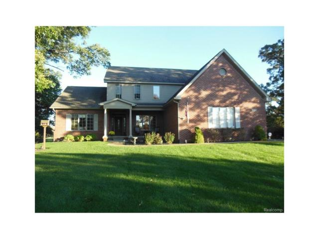 3225 Outback Trail, Putnam Twp, MI 48169 (#217091421) :: The Buckley Jolley Real Estate Team