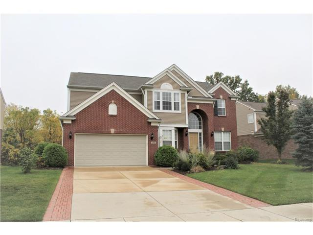 16880 Yellowstone Drive, Northville Twp, MI 48168 (#217091490) :: RE/MAX Classic