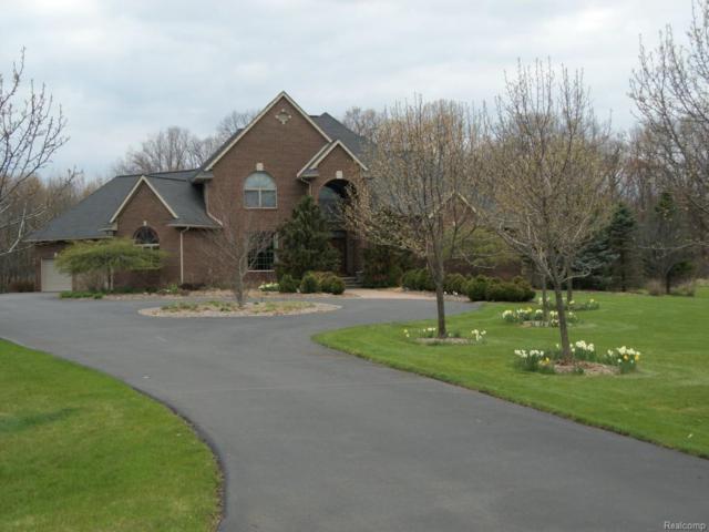 1954 Bridgets Way, Unadilla Twp, MI 48137 (#217091631) :: The Buckley Jolley Real Estate Team