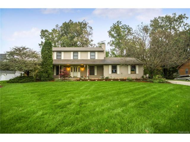 31112 Artesian Drive, Lyon Twp, MI 48381 (#217092960) :: The Buckley Jolley Real Estate Team
