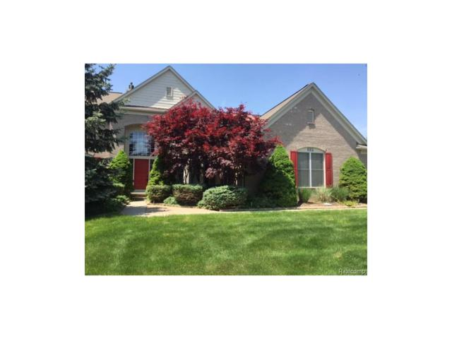338 Westbourne Court, Canton Twp, MI 48188 (#217093473) :: RE/MAX Classic