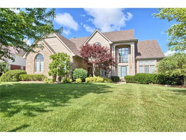 17471 Hilltop View Drive, Northville Twp, MI 48168 (#217093628) :: RE/MAX Classic