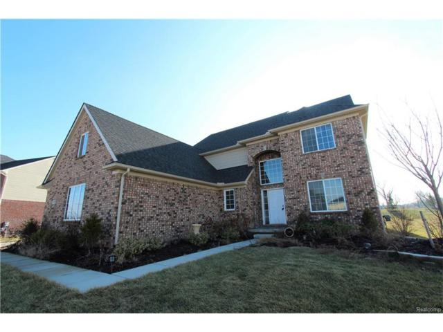 54933 Brentwood Drive, Lyon Twp, MI 48178 (#217093835) :: The Buckley Jolley Real Estate Team