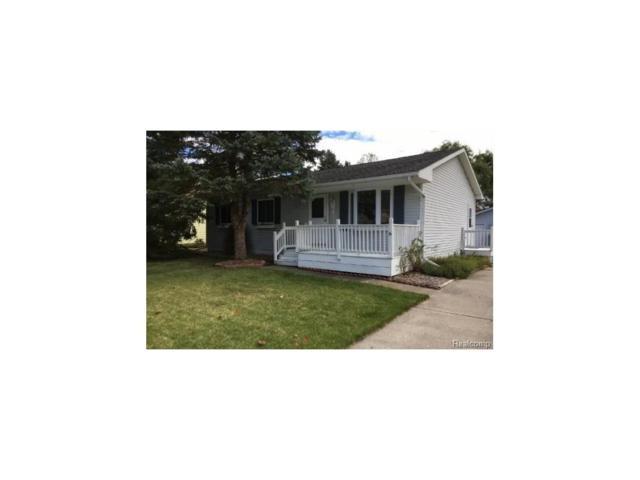 61359 Dean Drive, South Lyon, MI 48178 (#217093946) :: The Buckley Jolley Real Estate Team