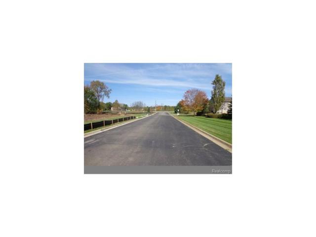 V/L Progressive Drive, Hartland Twp, MI 48353 (#217094003) :: The Buckley Jolley Real Estate Team