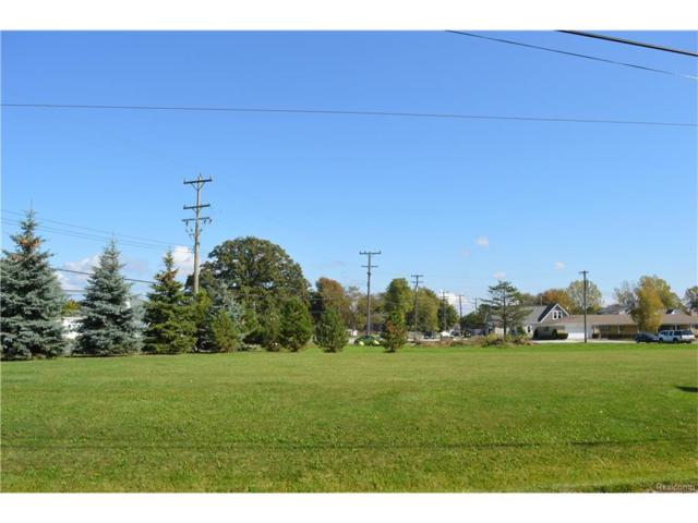 8637 Dixie Hwy, Ira Twp, MI 48023 (MLS #217094018) :: The Toth Team
