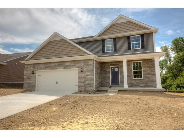 Lot 68 Douglas Fir, Oceola Twp, MI 48843 (#217094084) :: The Buckley Jolley Real Estate Team