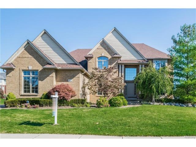1329 Clear Creek Drive, Rochester Hills, MI 48306 (#217094329) :: Simon Thomas Homes