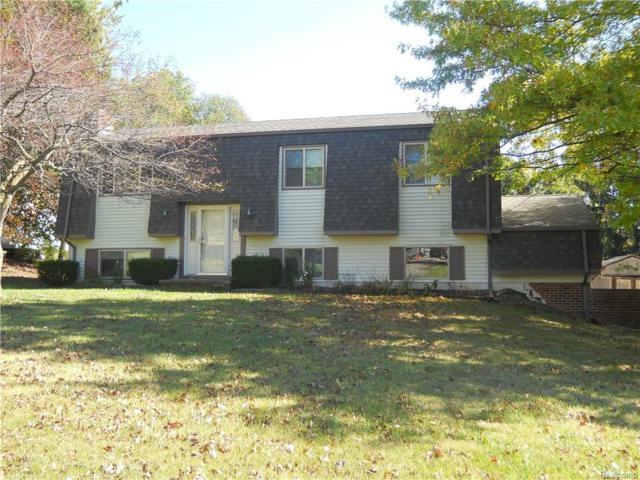2540 Sun Terrace Drive, Hartland Twp, MI 48353 (#217094903) :: The Buckley Jolley Real Estate Team