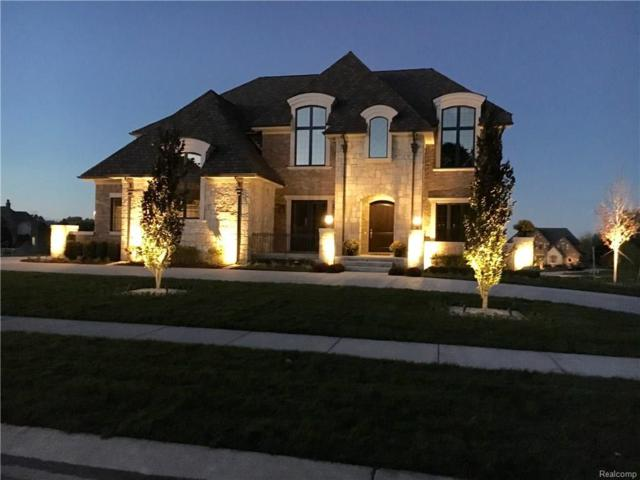 3899 Piccadilly Drive, Rochester Hills, MI 48309 (#217095621) :: The Buckley Jolley Real Estate Team
