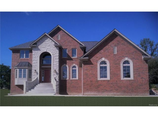 23650 Martell Court, Novi, MI 48377 (MLS #217097081) :: The Toth Team