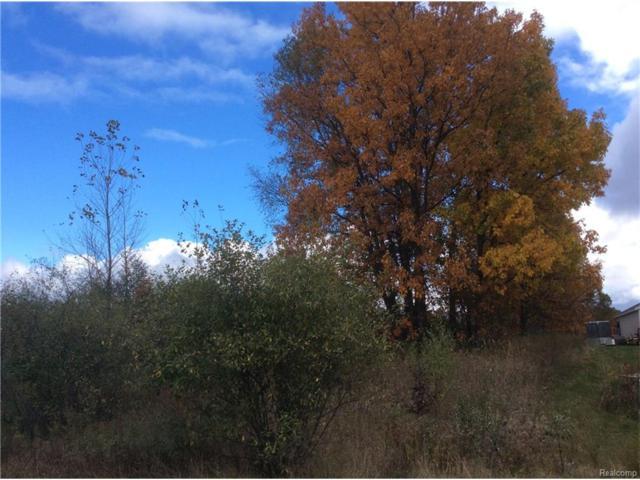 VL Ira Lane, Cohoctah Twp, MI 48855 (MLS #217097140) :: The Toth Team