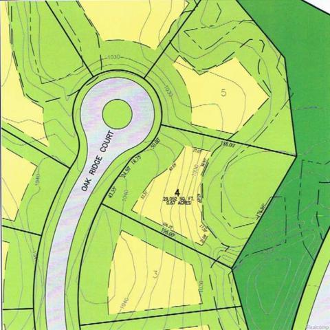 7114 Oak Ridge Court, Independence Twp, MI 48346 (MLS #217099176) :: The Toth Team