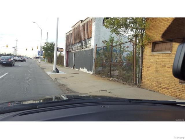 13222 Grand River Avenue W, Detroit, MI 48227 (#217100061) :: RE/MAX Classic