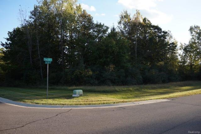 000 Deer Lake Court, Independence Twp, MI 48346 (#217103256) :: RE/MAX Classic